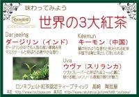 【ロンネフェルト】世界3大紅茶お試しセット